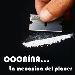 Cocaína:
